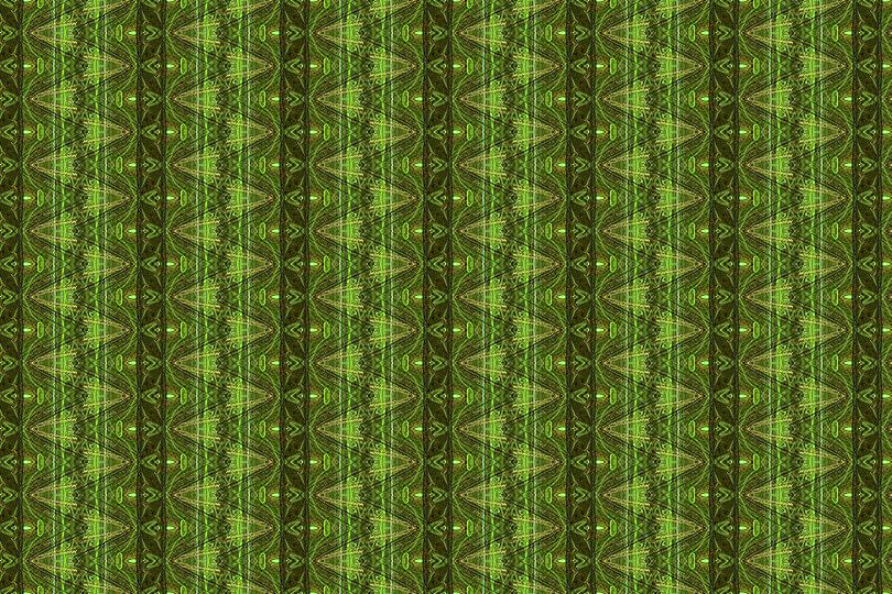緑・黄緑系003