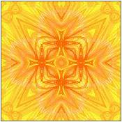 黄・橙系003