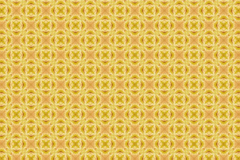 黄・橙系012